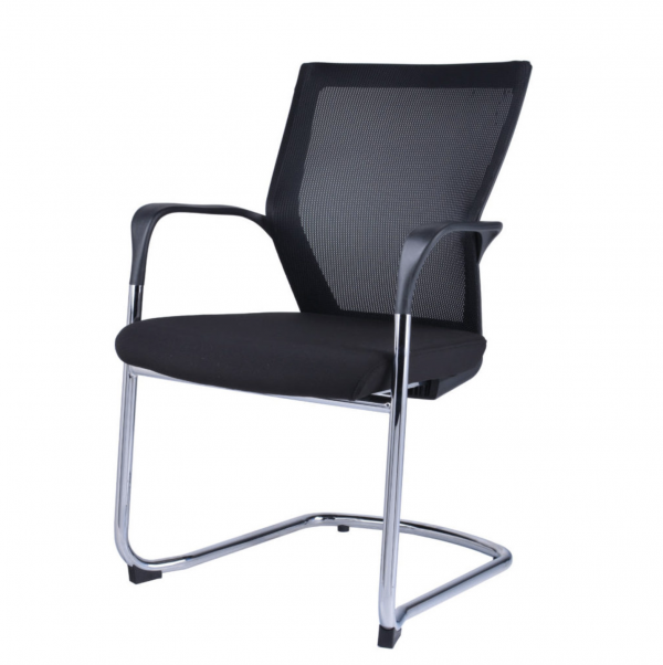 Visitor or Meeting Chair 1
